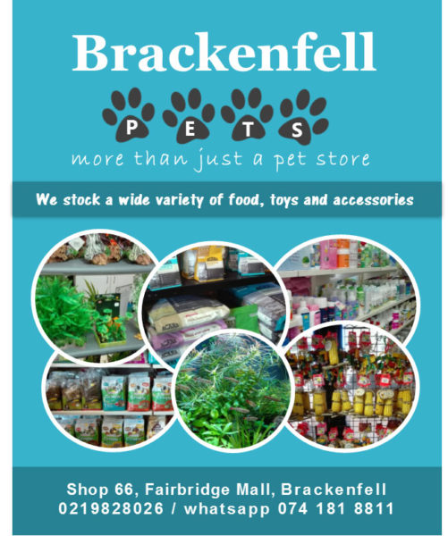 Brackenfell-pets-1.jpg