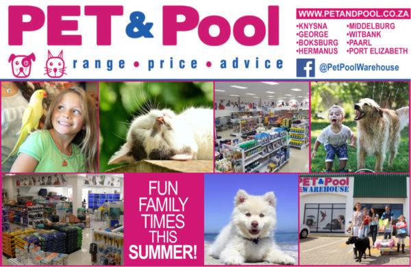 Pet-Pool-January-2.jpg